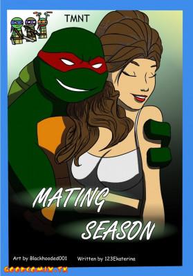 Goodcomix Teenage Mutant Ninja Turtles - [Blackhooded001] - Mating Season Part 1