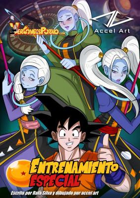 Goodcomix Dragon Ball - [VercomicsPorno][Accel Art] - Entrenamiento Especial